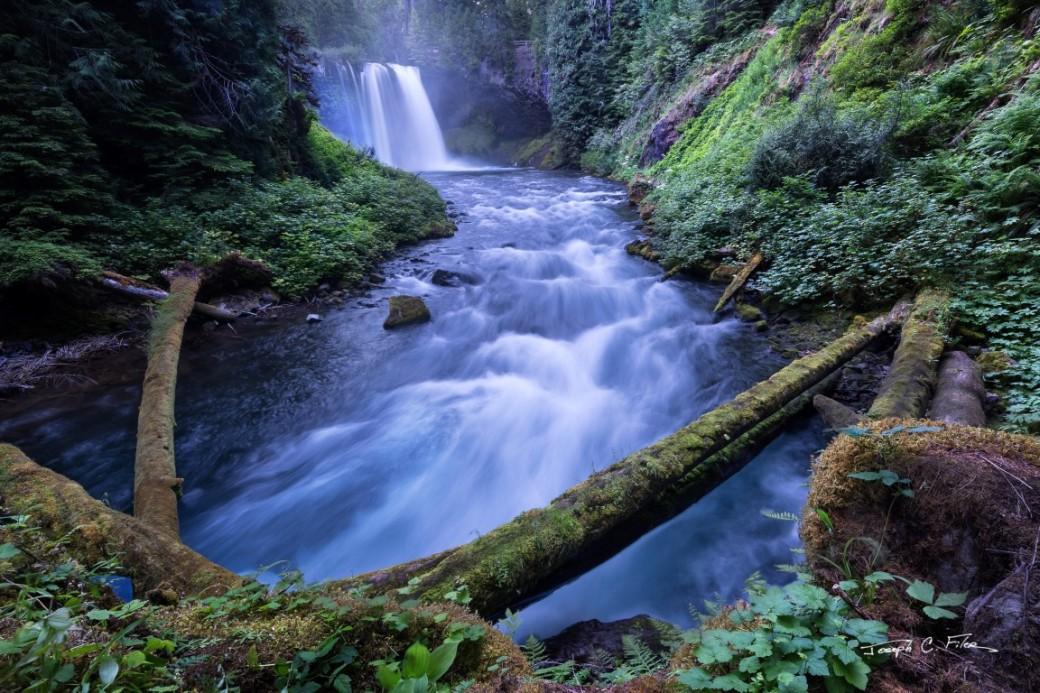 12 Koosah Falls (Medium)