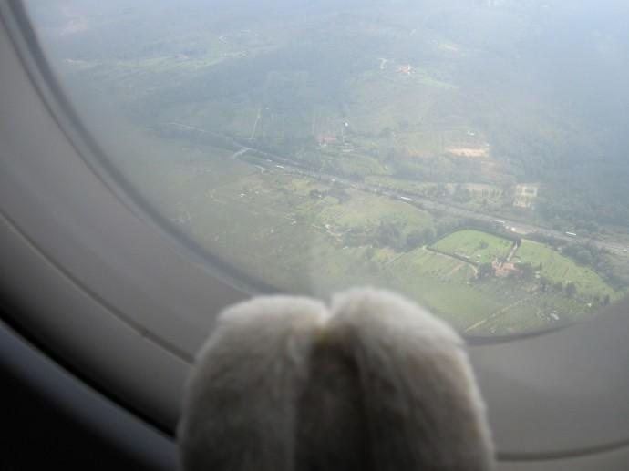 05 01 Flying (Large)
